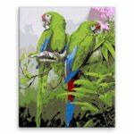 Malování podle čísel Krásní papoušci