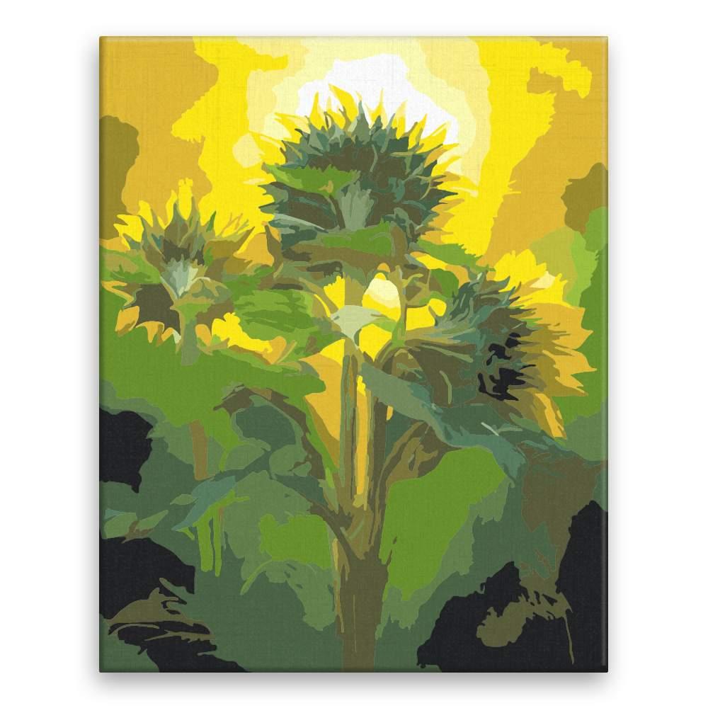 Malování podle čísel Tři slunečnice