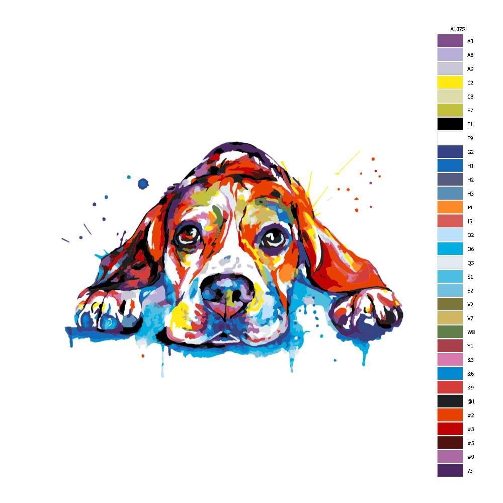 Návod pro malování podle čísel Bígl v barvách