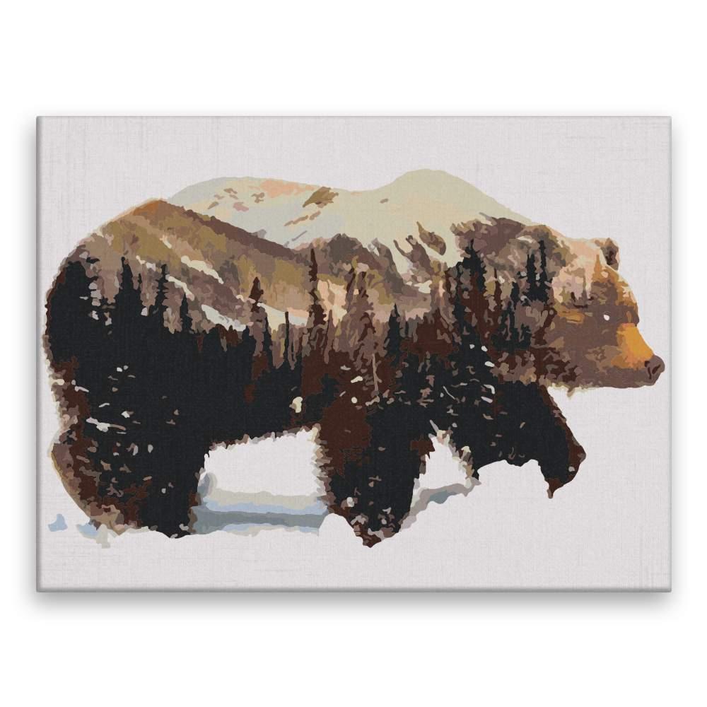 Malování podle čísel Les a medvěd