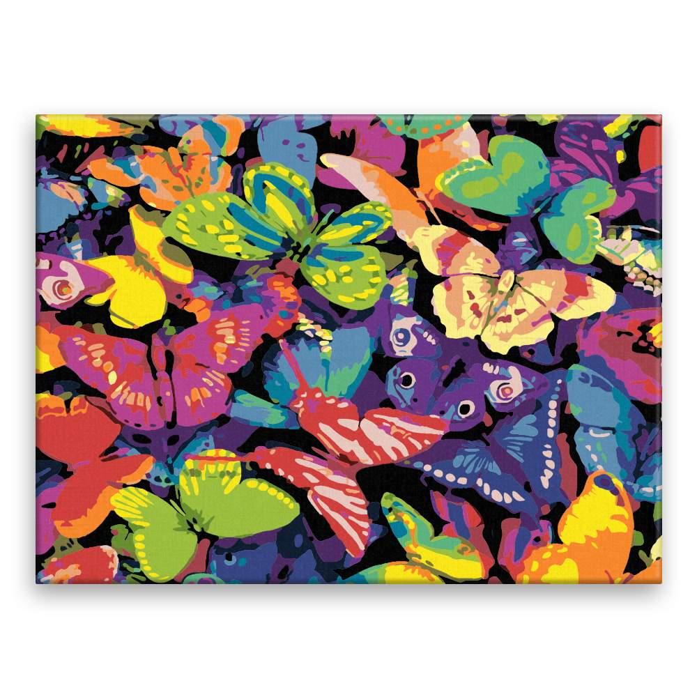 Malování podle čísel Motýli v barvách