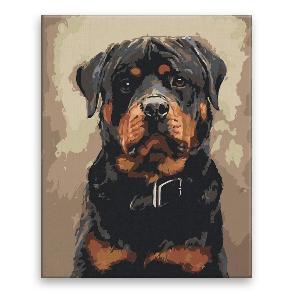 Malování podle čísel Pes s obojkem