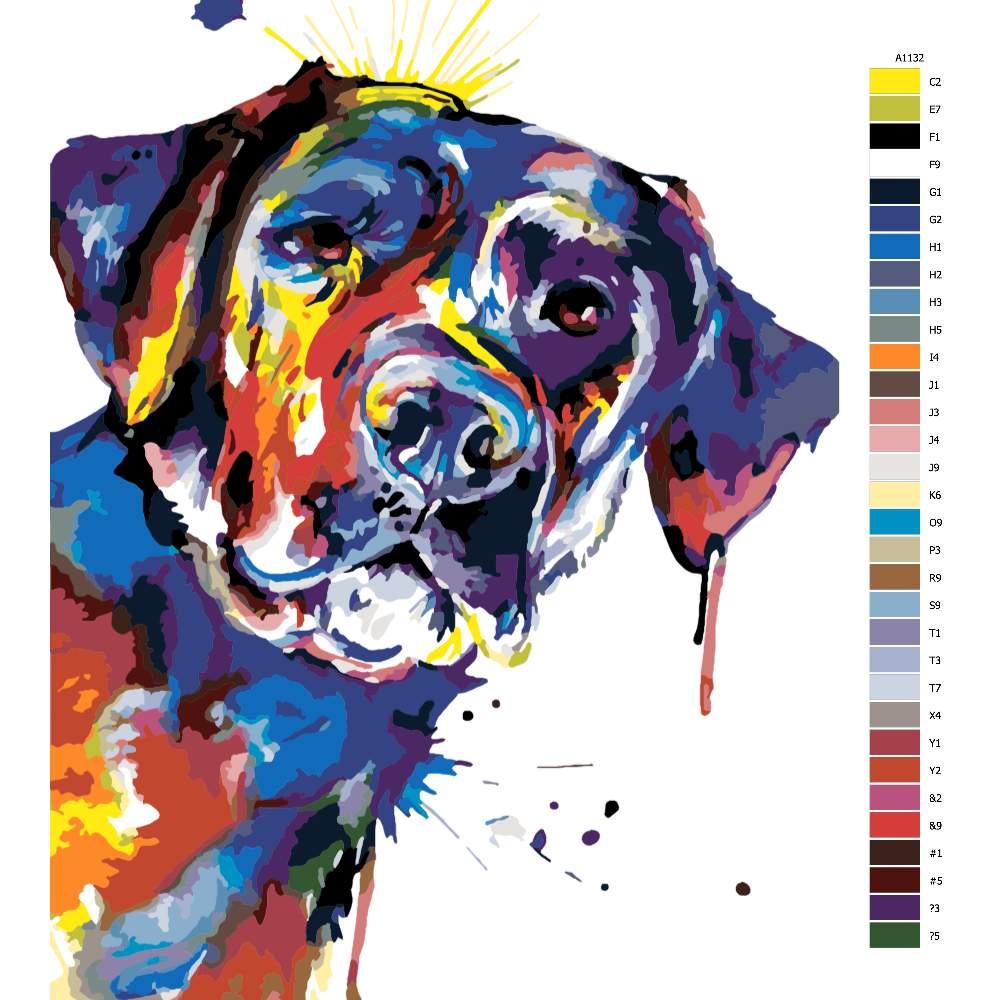 Návod pro malování podle čísel Pestrobarevný labrador