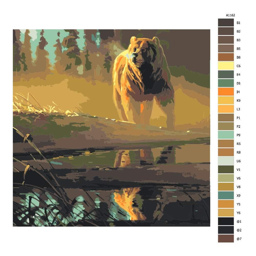 Návod pro malování podle čísel Medvěd hnědý u řeky