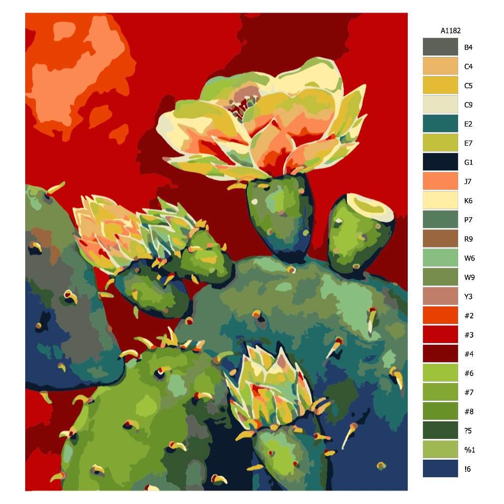 Návod pro malování podle čísel Kvetoucí kaktus
