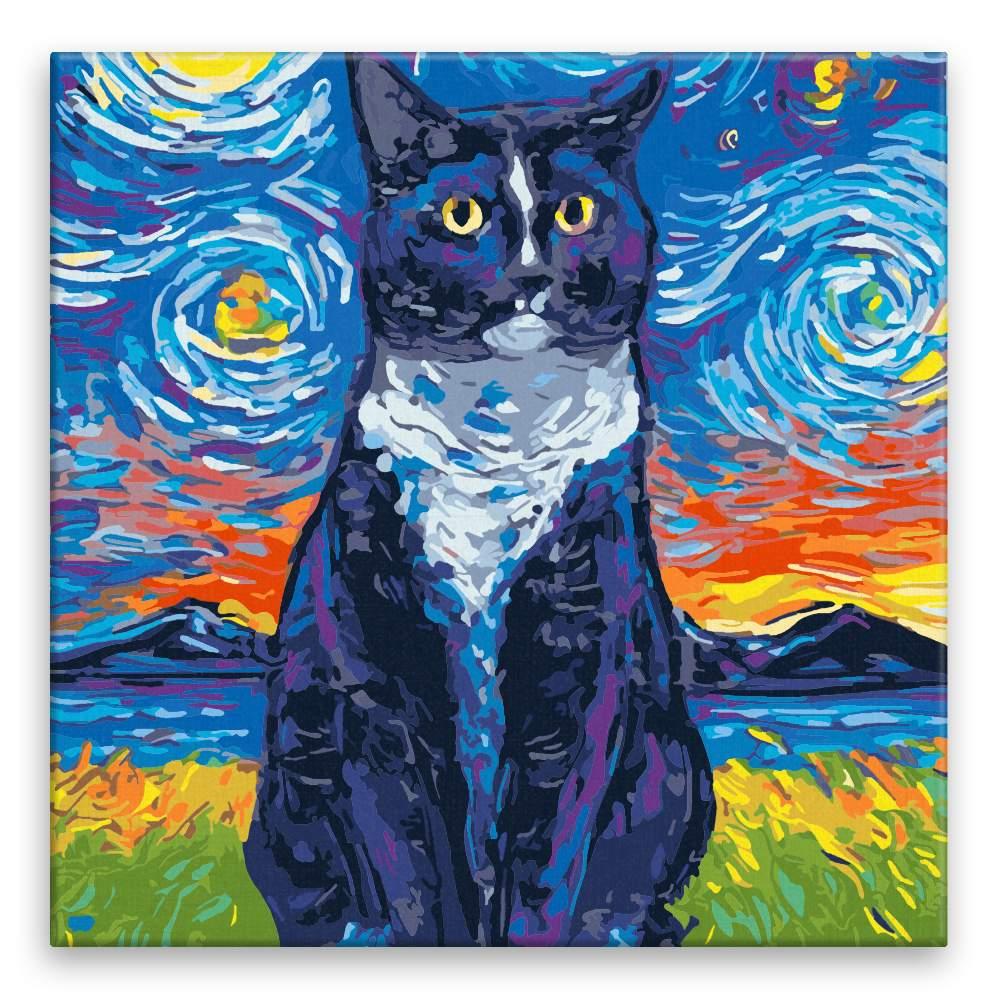 Malování podle čísel Sedící kočka pestrobarevná
