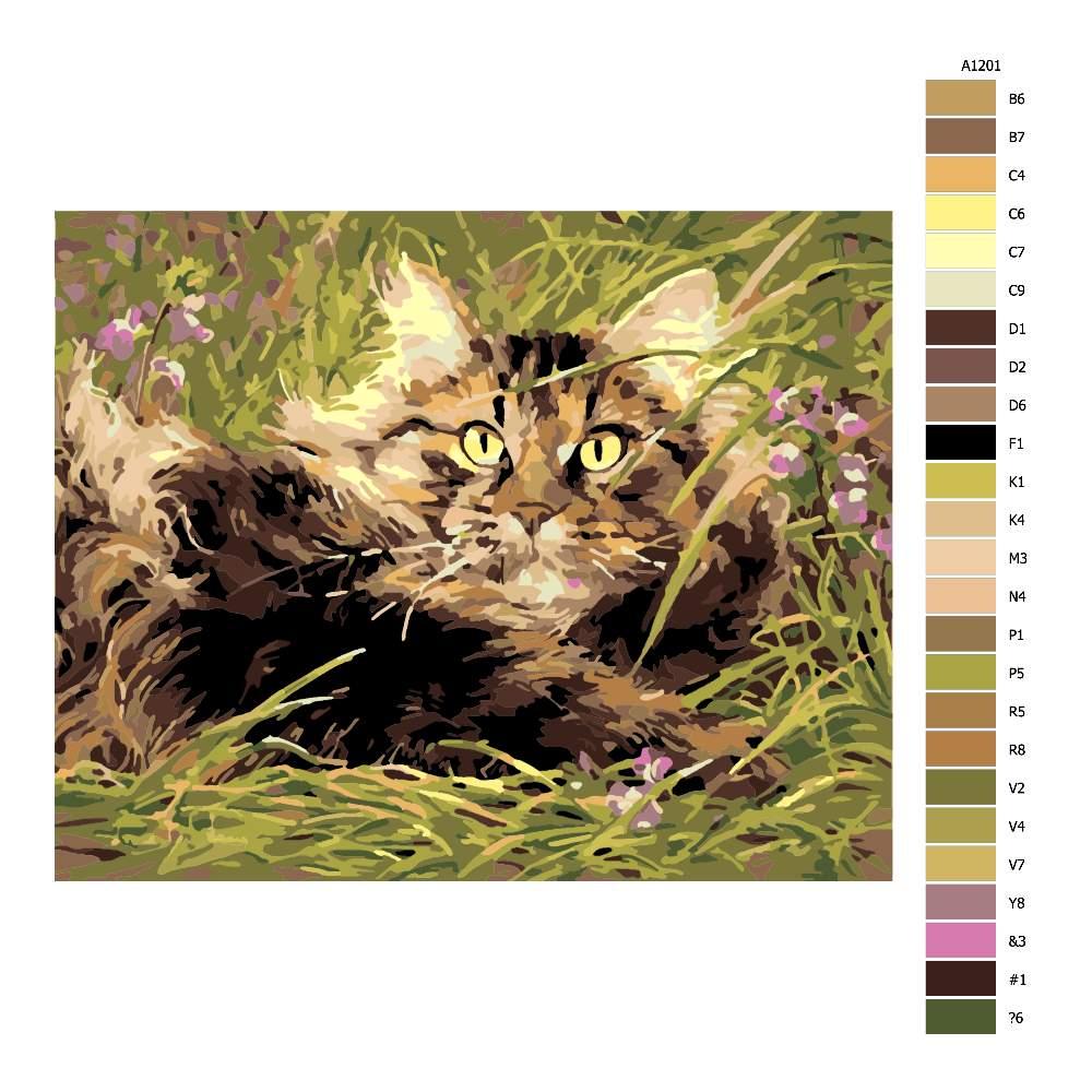 Návod pro malování podle čísel Kočka v trávě