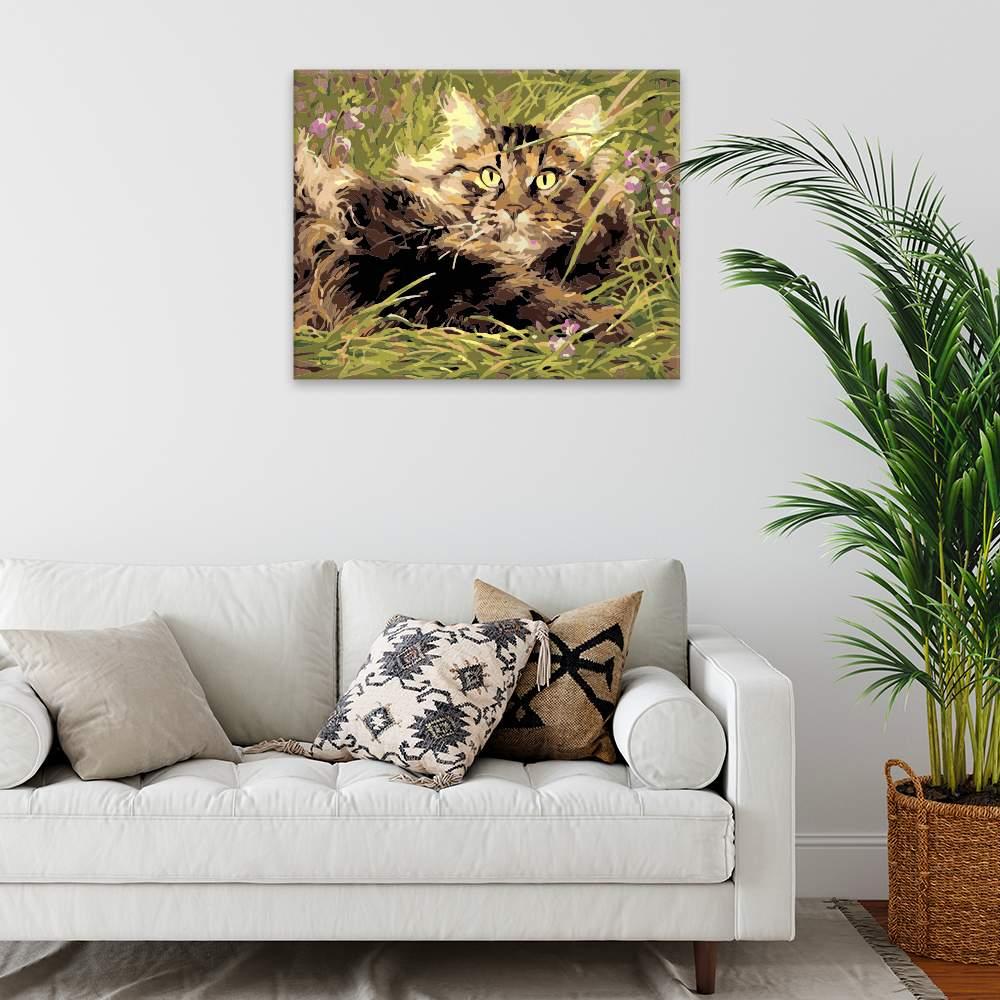 Malování podle čísel Kočka v trávě
