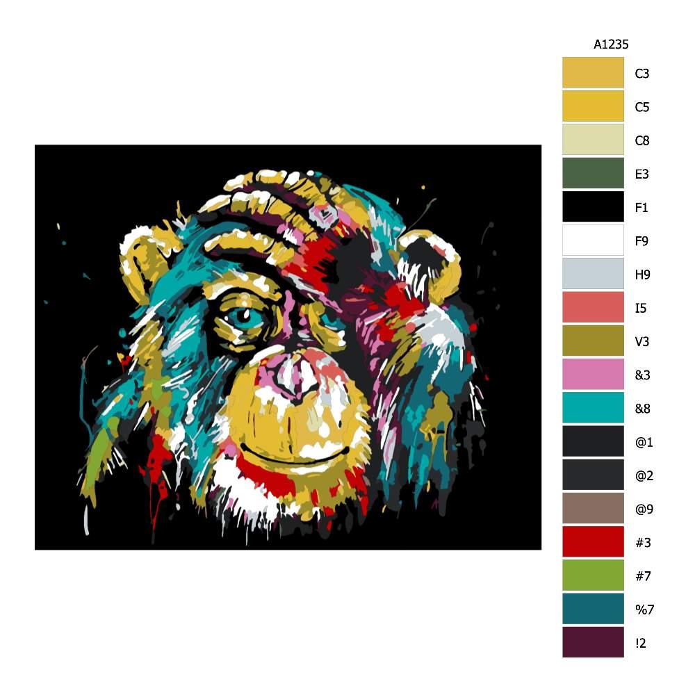 Návod pro malování podle čísel Čimp v barvách