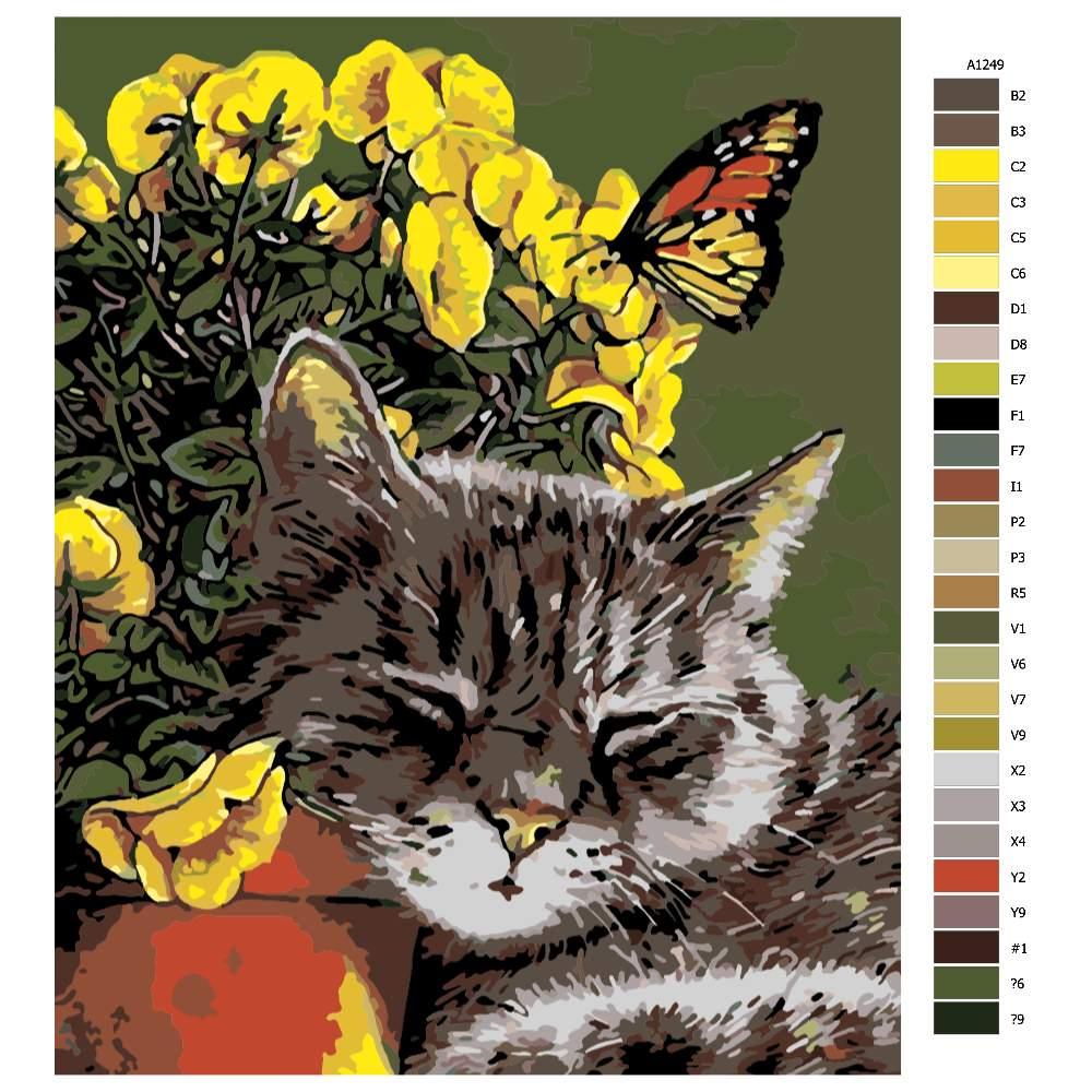 Návod pro malování podle čísel Spící kočička v kvítí