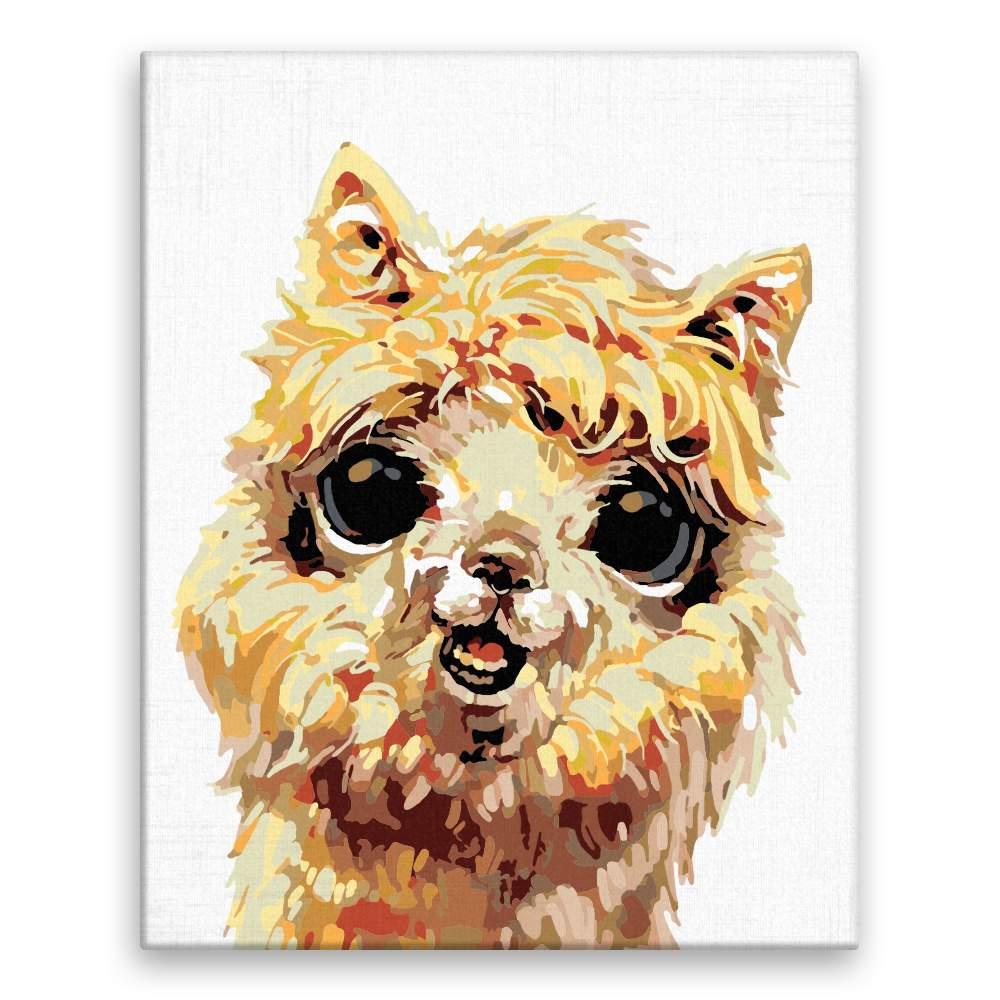 Malování podle čísel Usměvavá lama