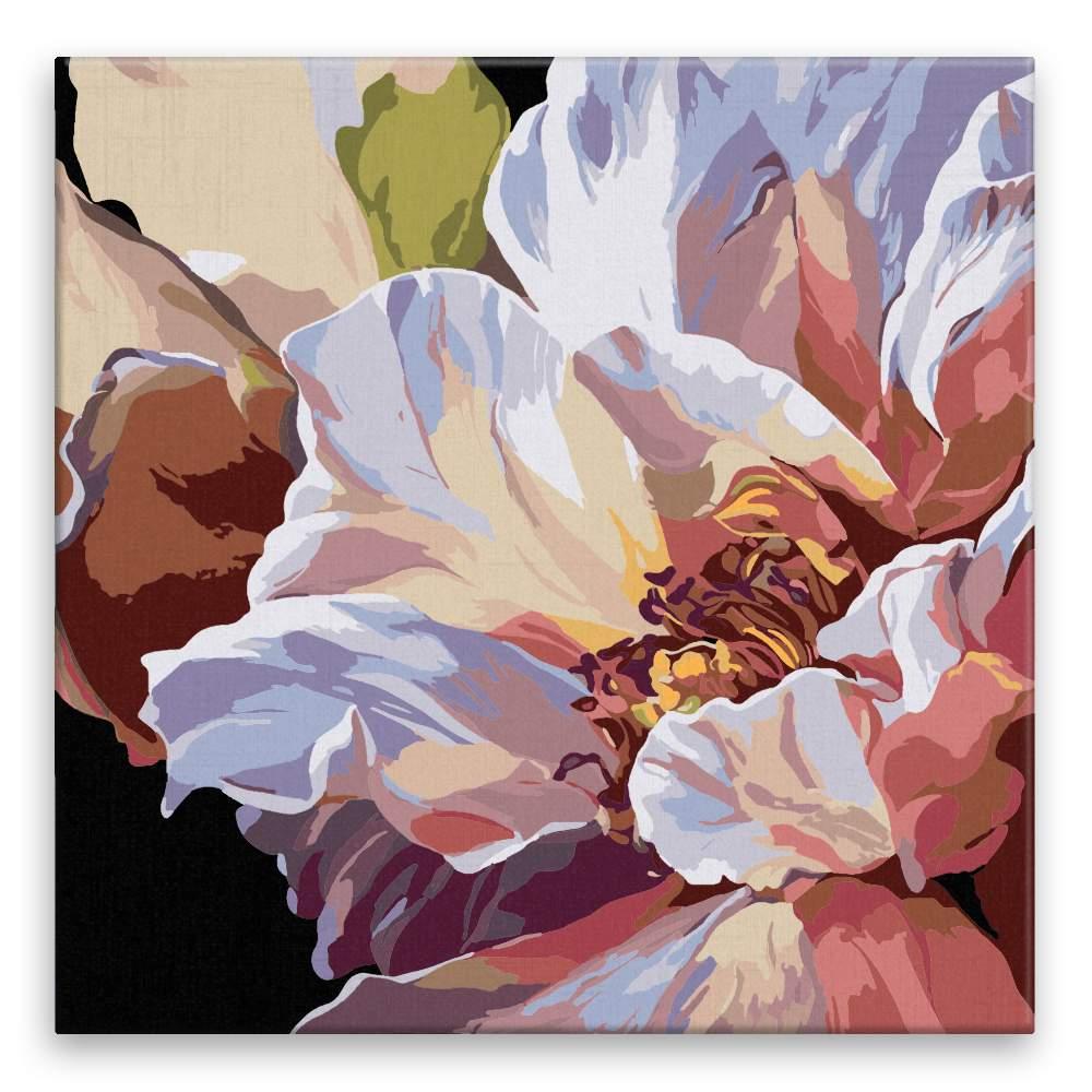 Malování podle čísel Květ
