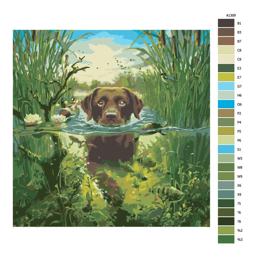 Návod pro malování podle čísel Pes v řece