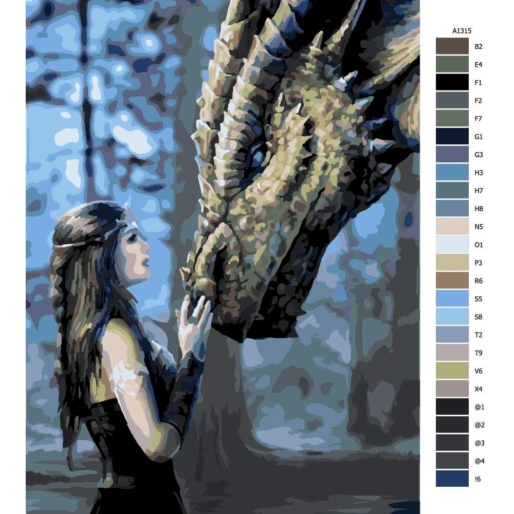 Návod pro malování podle čísel Dračí žena