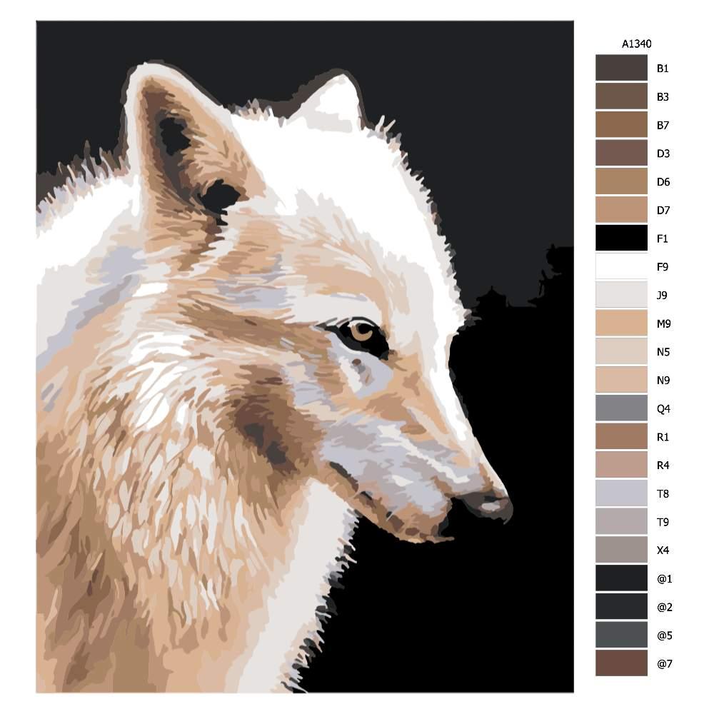 Malování podle čísel Liščí pohled