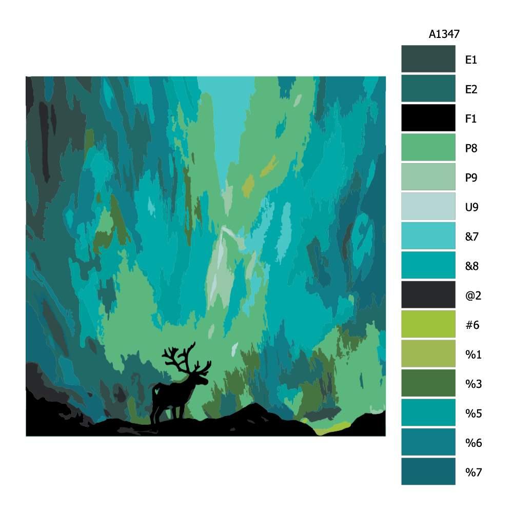 Návod pro malování podle čísel Los a polární záře