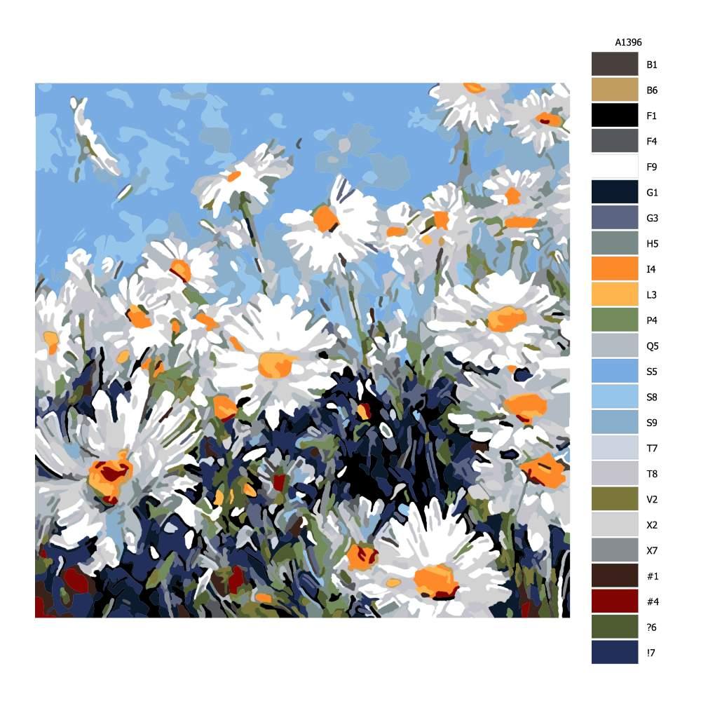 Návod pro malování podle čísel Kopretinová louka