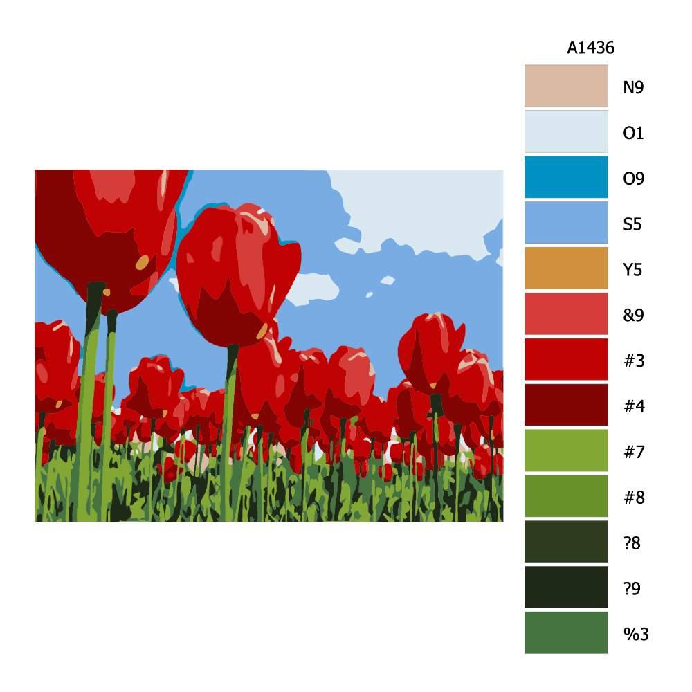 Návod pro malování podle čísel Rudé tulipány