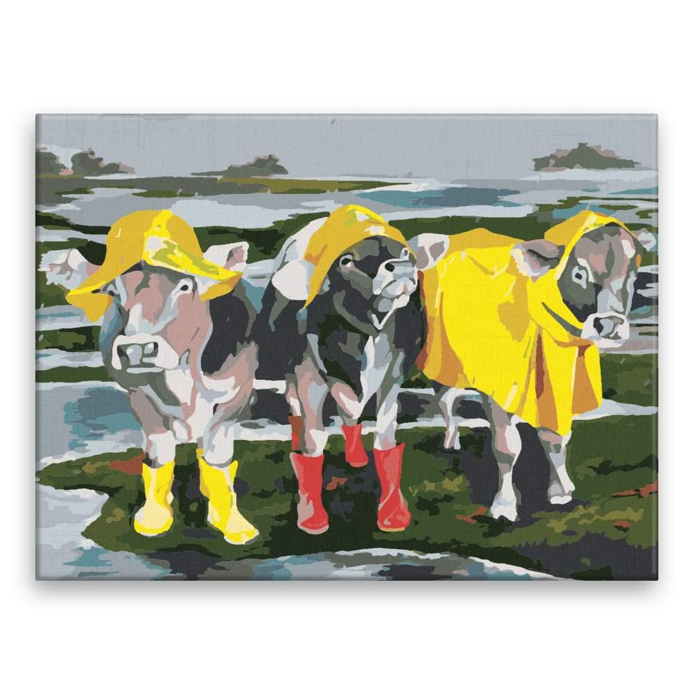 Malování podle čísel Dámy v dešti