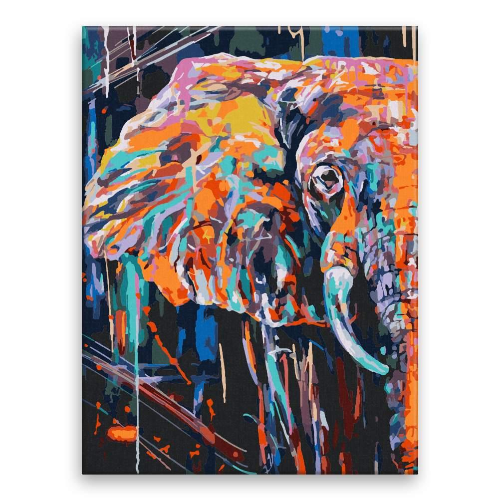 Malování podle čísel Slon z půlky v barvách