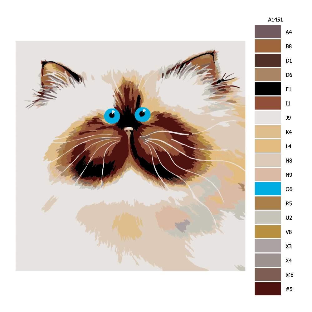 Návod pro malování podle čísel Modrooký chlupáč