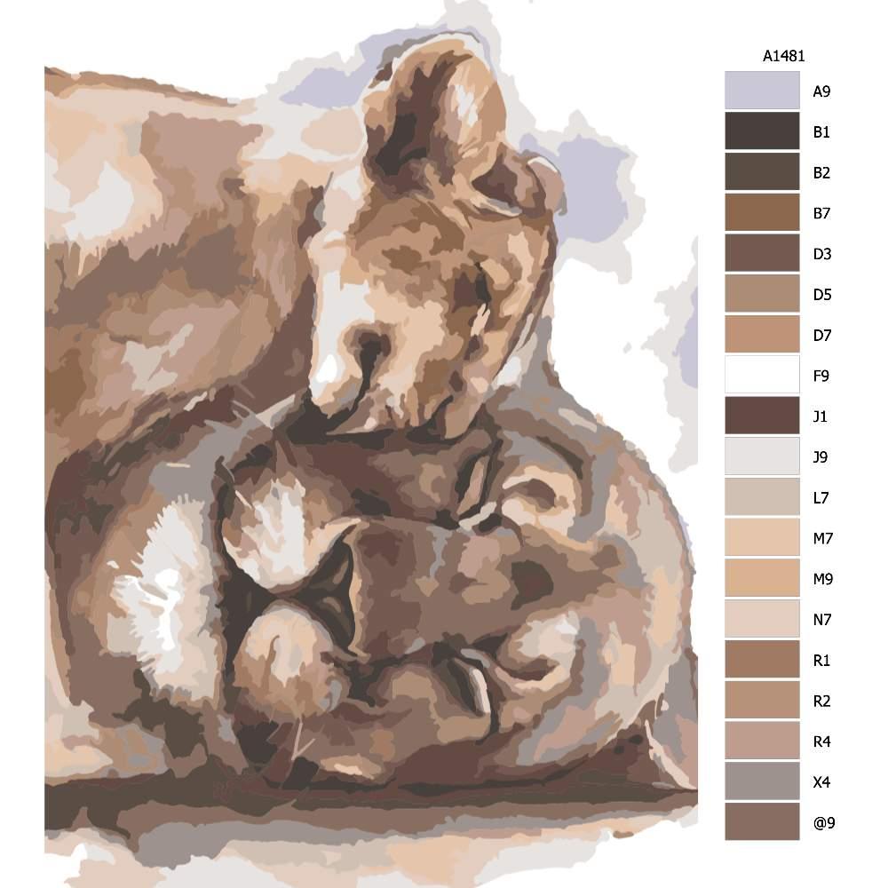 Návod pro malování podle čísel Lví láska