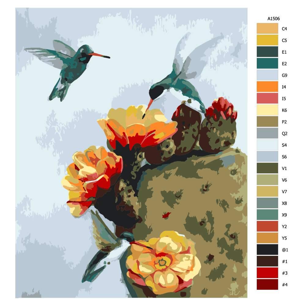 Návod pro malování podle čísel Kolibříci a kaktus