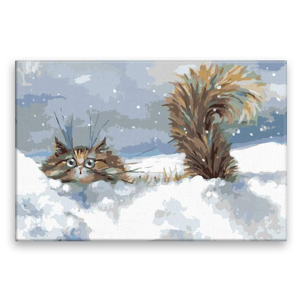 Malování podle čísel Kocour ve sněhu