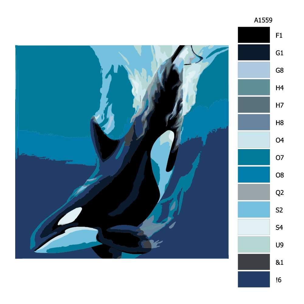 Návod pro malování podle čísel Kosatka