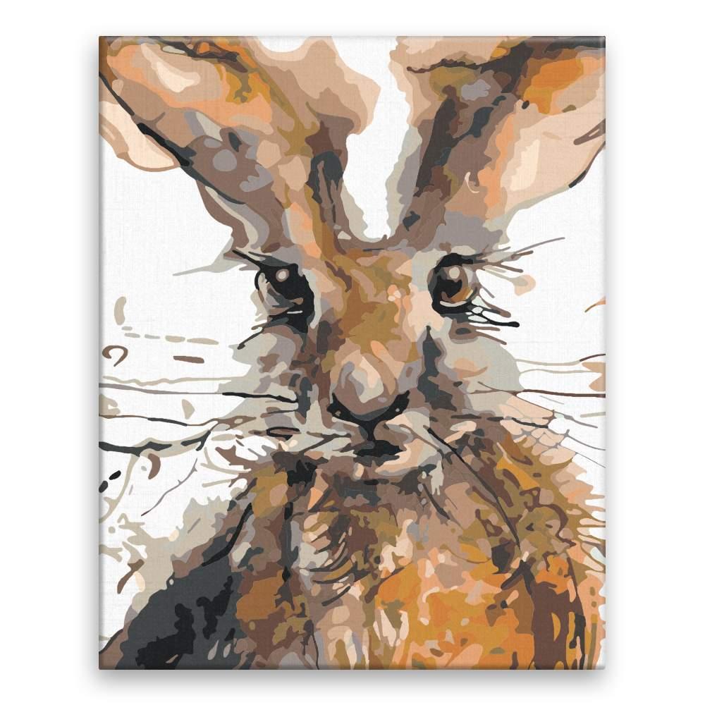 Malování podle čísel Vykukující zajíc