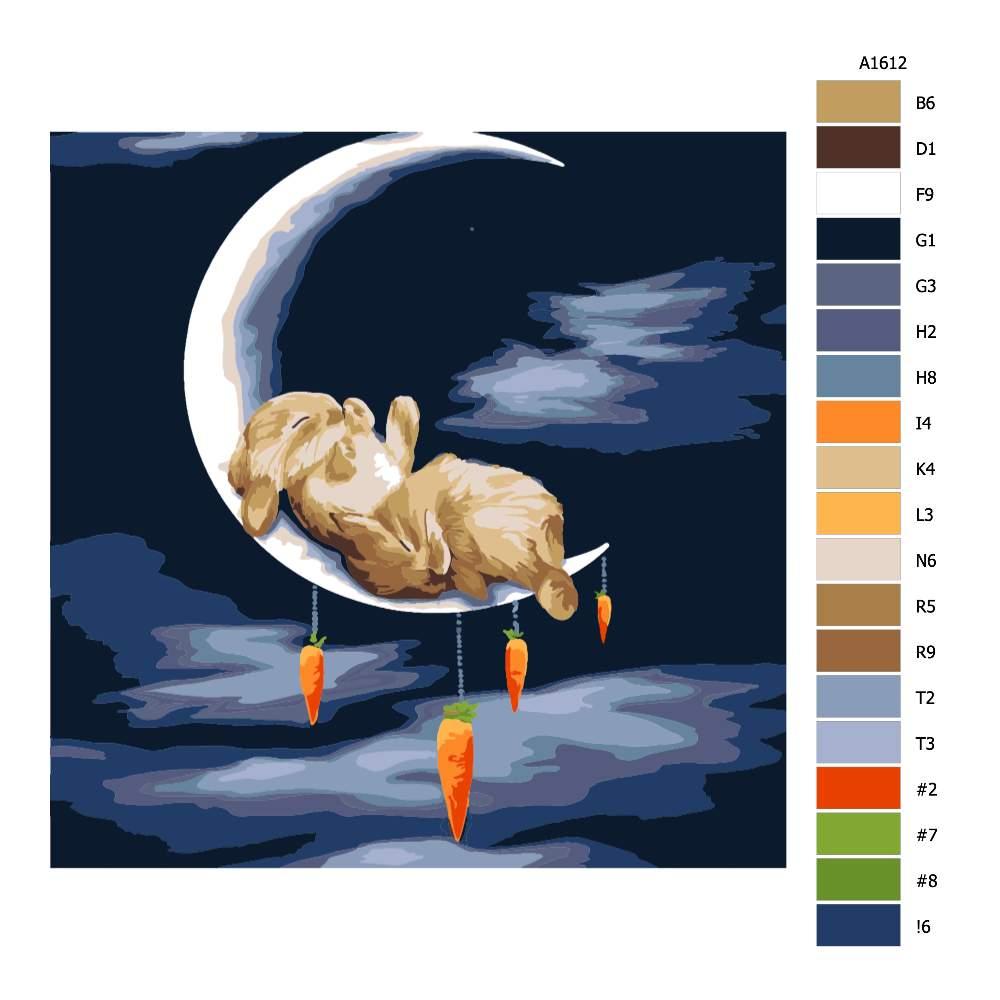 Návod pro malování podle čísel Spí na měsíci