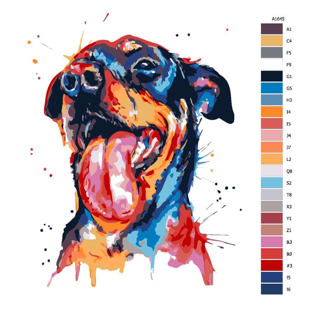 Návod pro malování podle čísel Rotvajler v barvách
