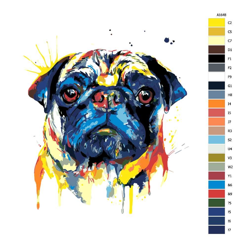 Malování podle čísel Mopsík v barvách