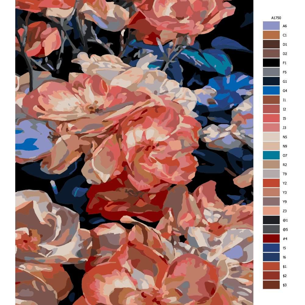 Návod pro malování podle čísel Ušlechtilé květy