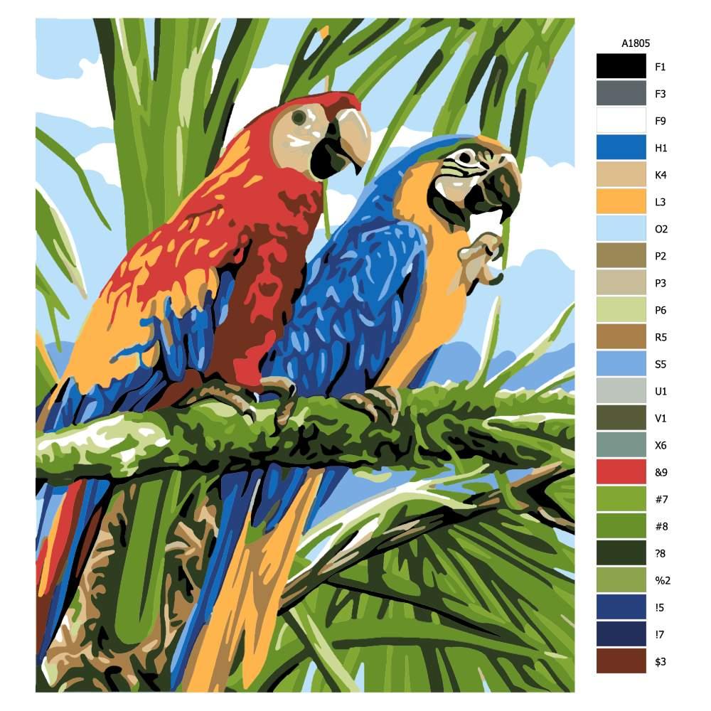 Návod pro malování podle čísel Dva papoušci