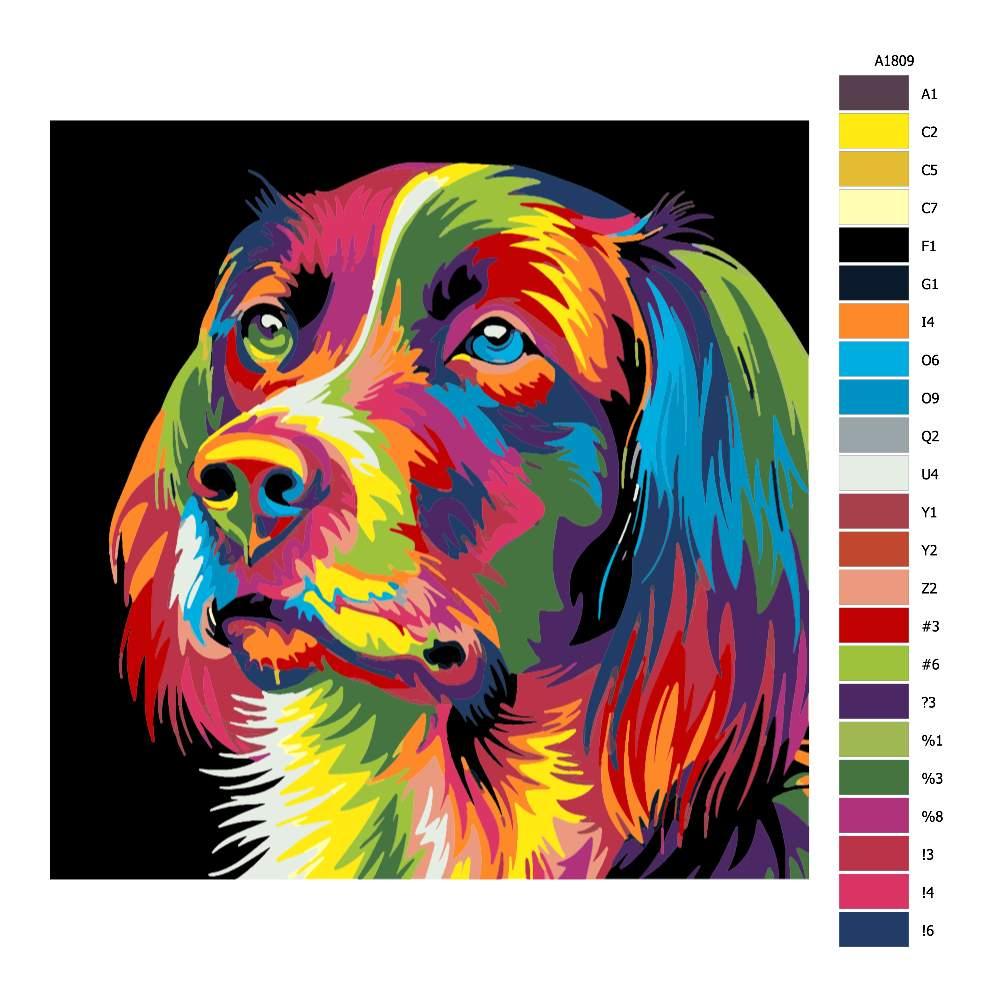 Návod pro malování podle čísel Psí pohled v barvách