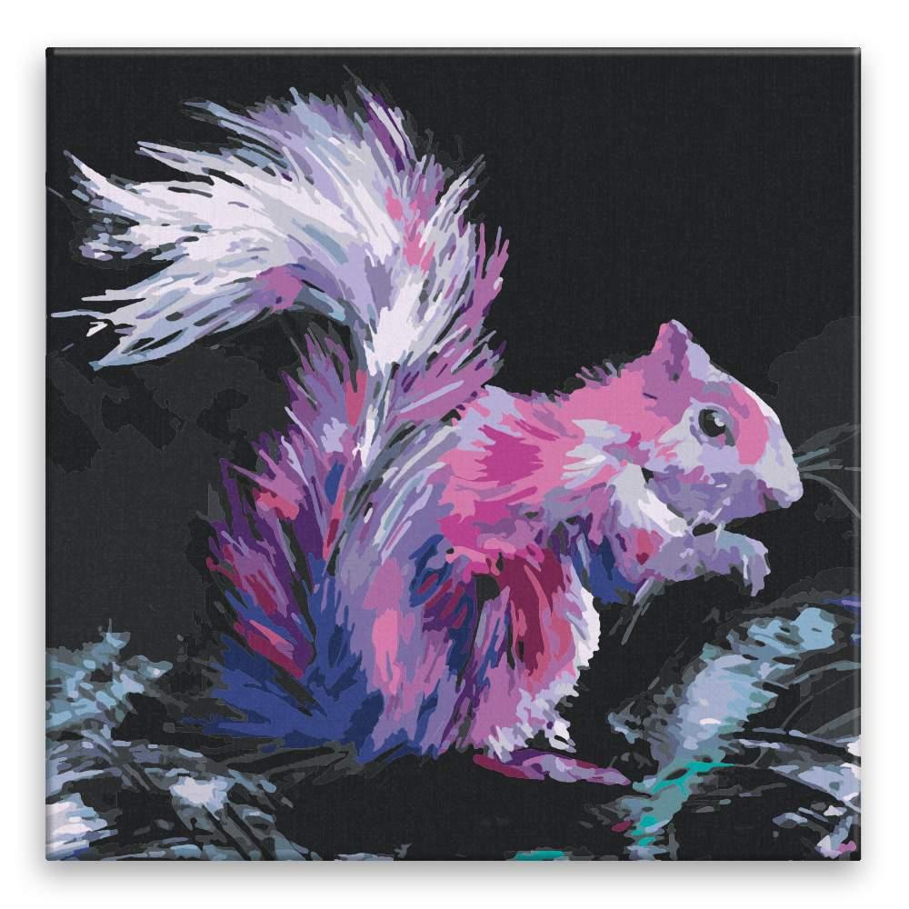 Malování podle čísel Růžová veverka