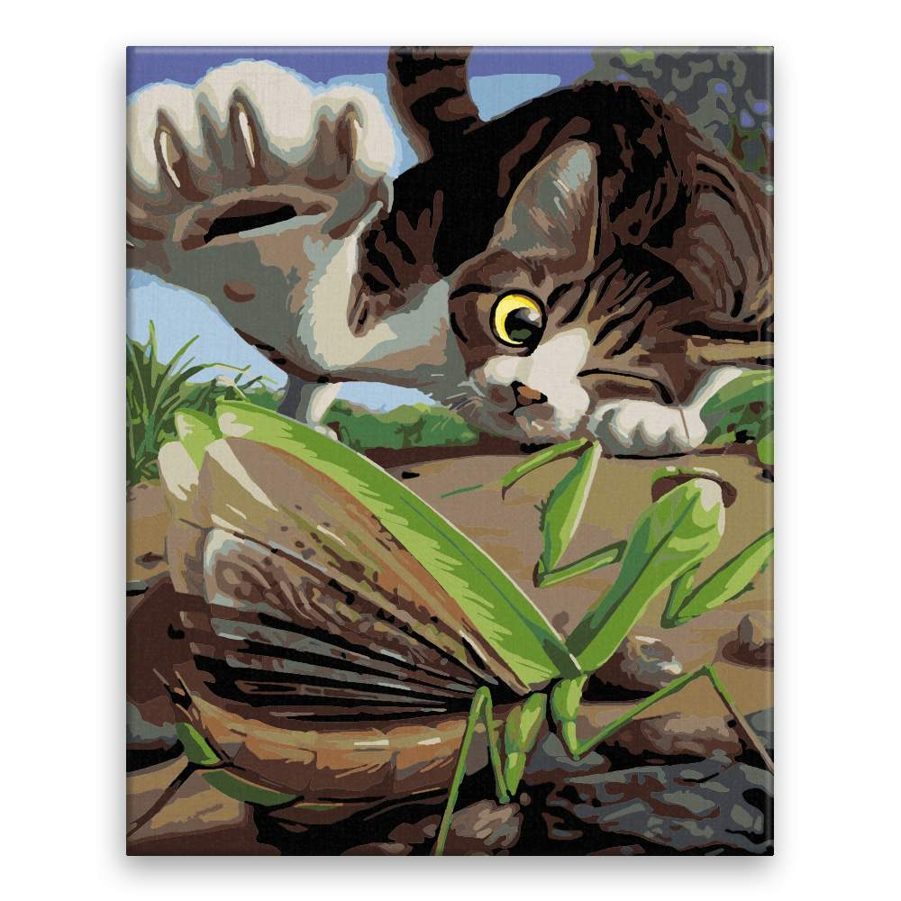 Malování podle čísel Hravá kočka