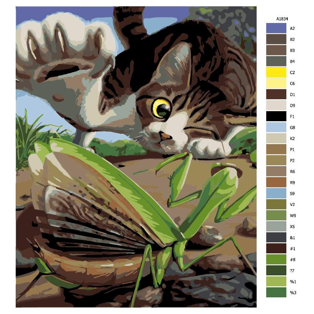 Návod pro malování podle čísel Hravá kočka