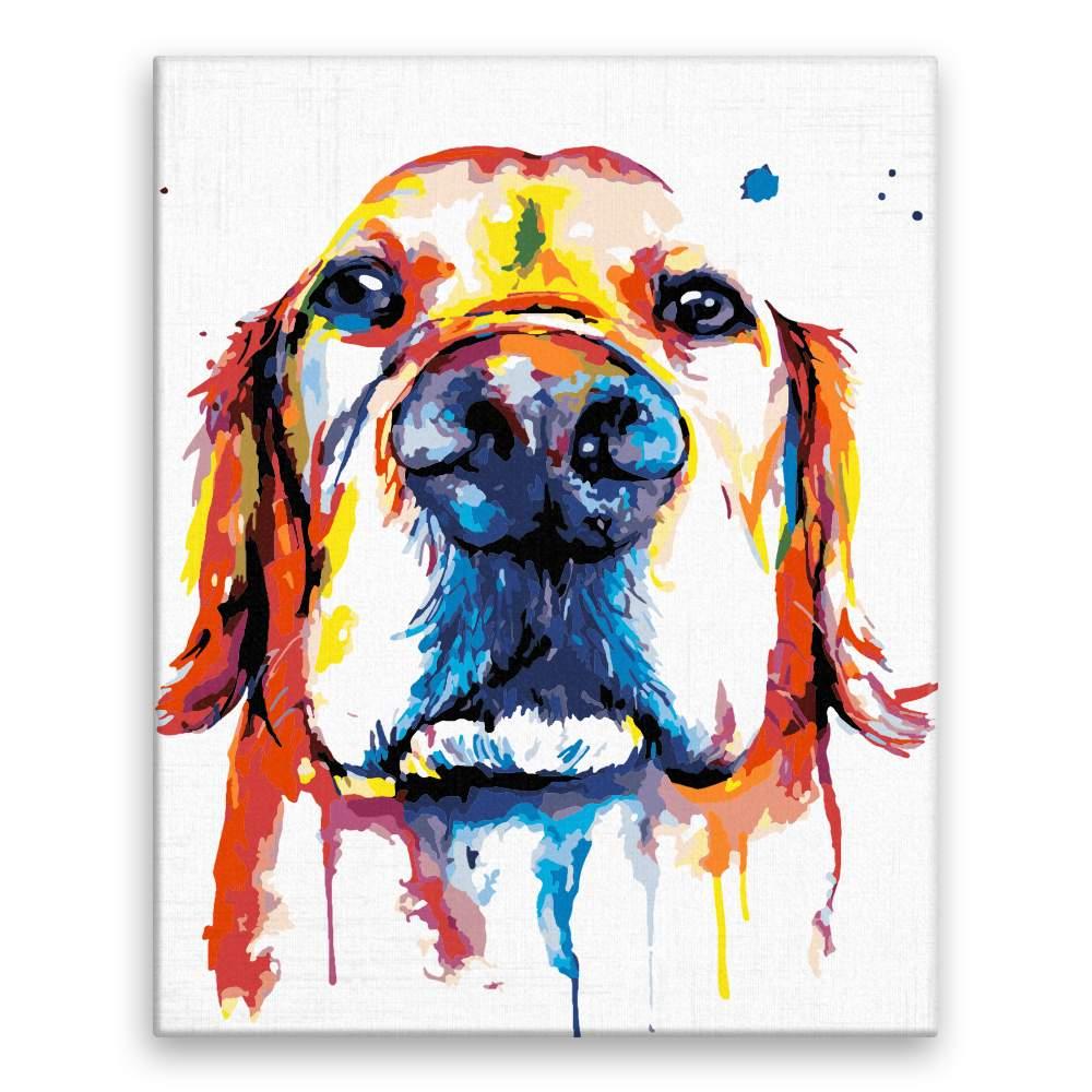 Malování podle čísel Čumák v barvách