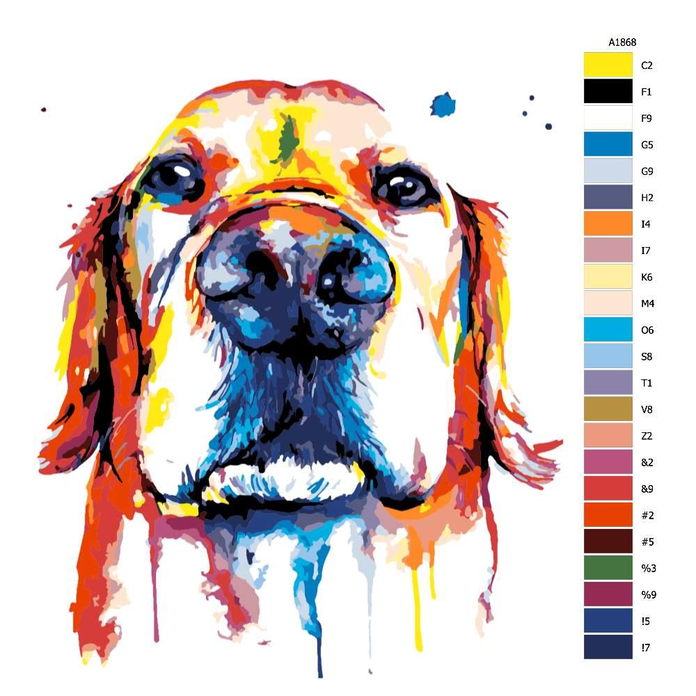 Návod pro malování podle čísel Čumák v barvách
