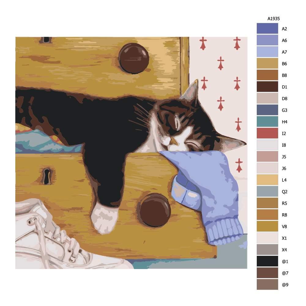 Návod pro malování podle čísel Spící mourek