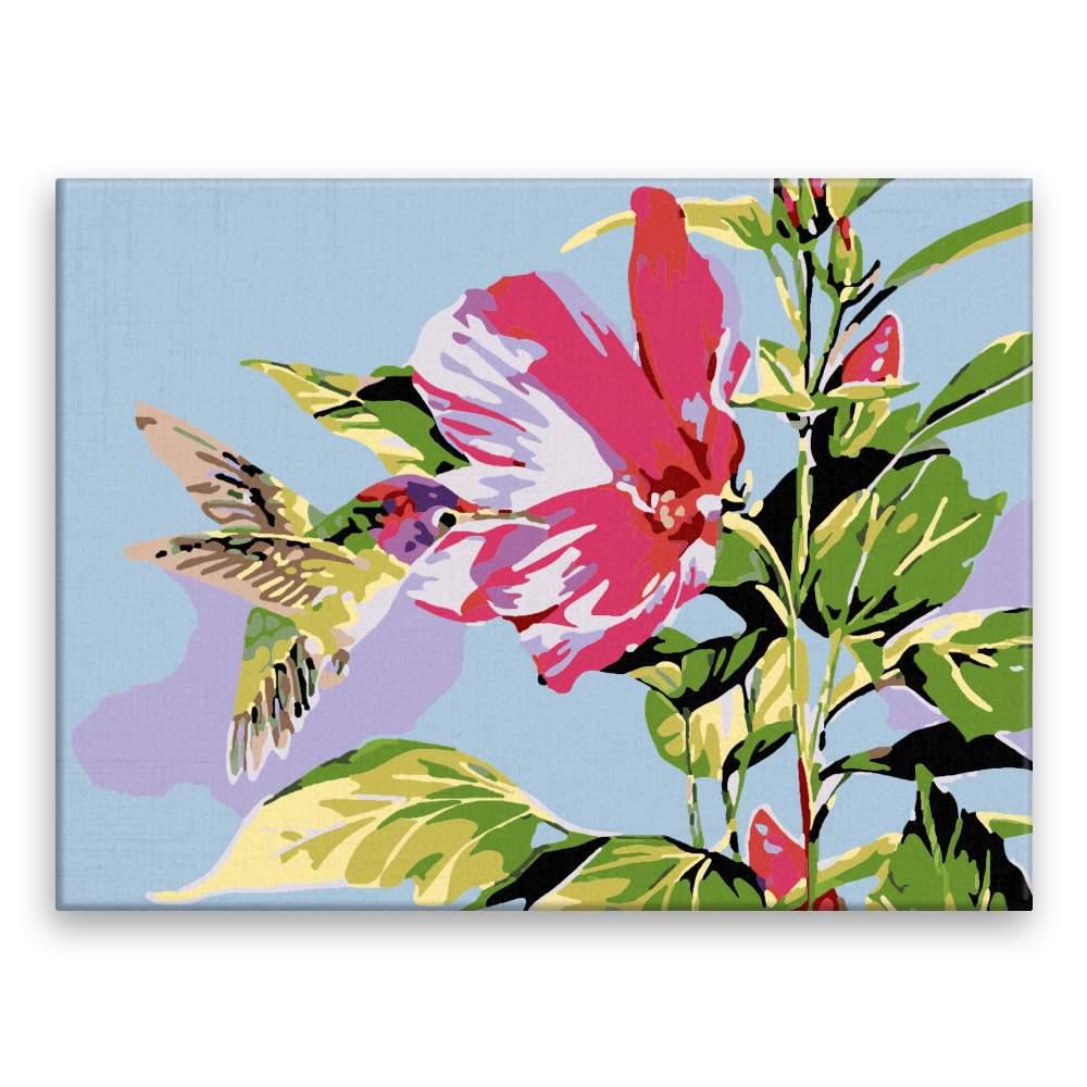 Malování podle čísel Kolibřík u květu
