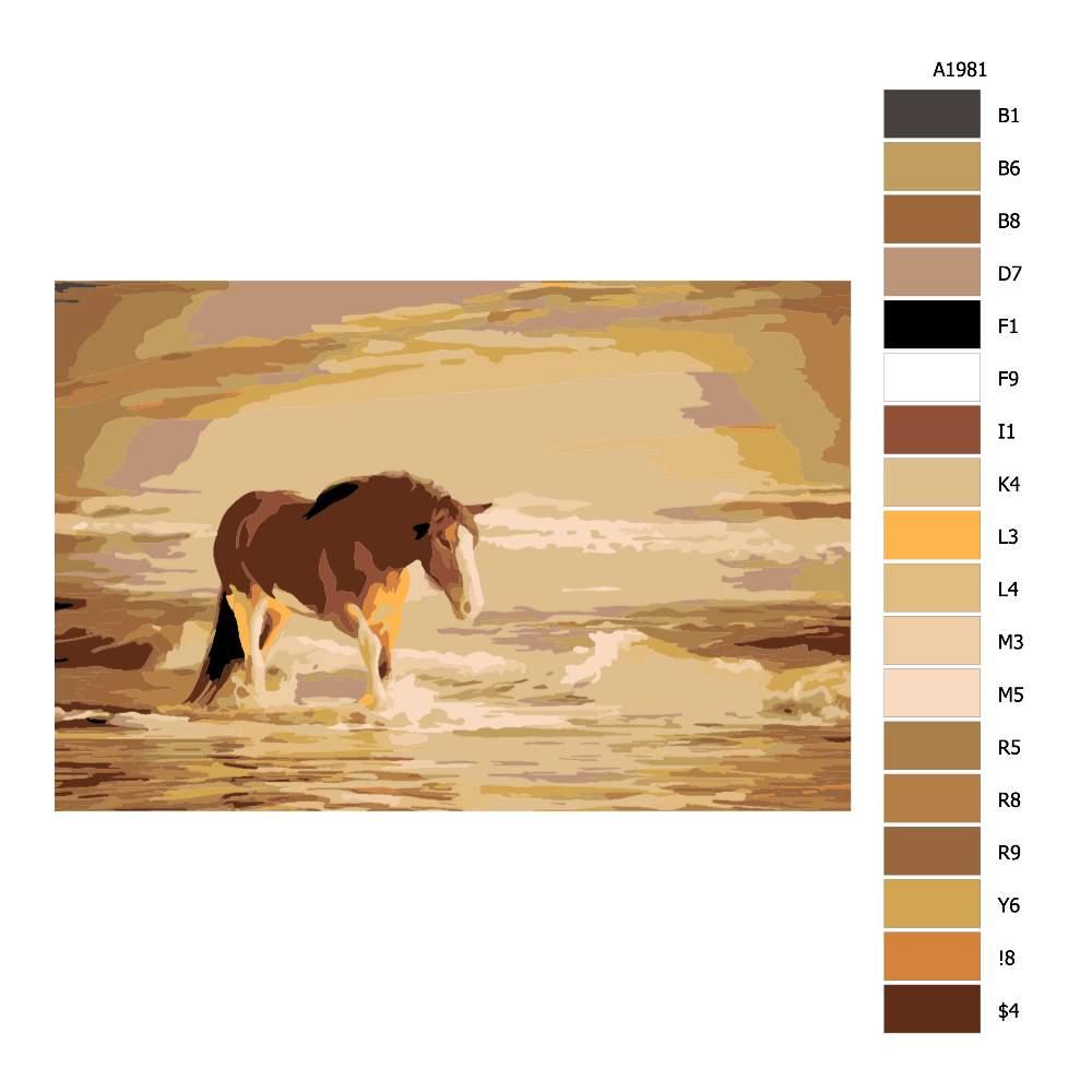 Návod pro malování podle čísel Hřebec na pláži