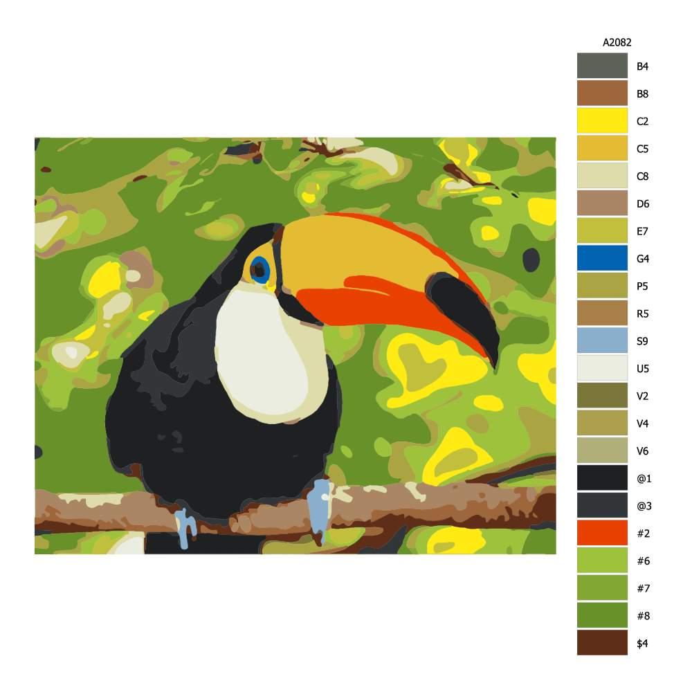 Návod pro malování podle čísel Tukan obrovský