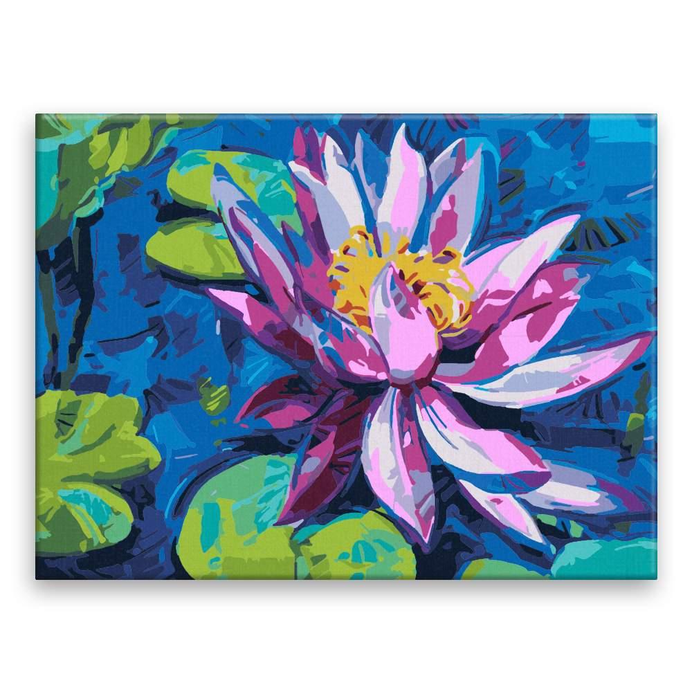 Malování podle čísel Květ vodního leknínu