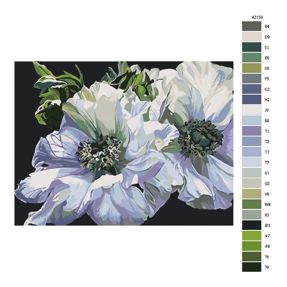 Malování podle čísel Zelenobílé květy