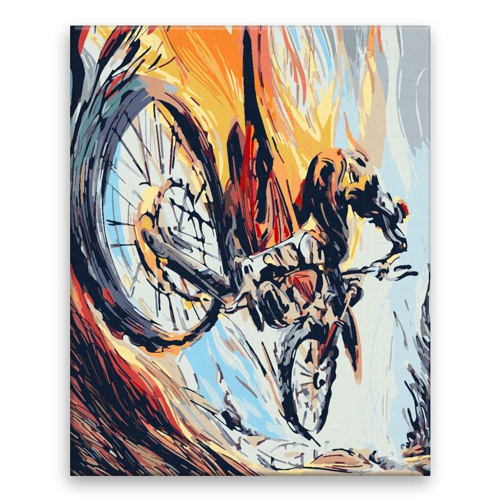 Malování podle čísel Cyklista