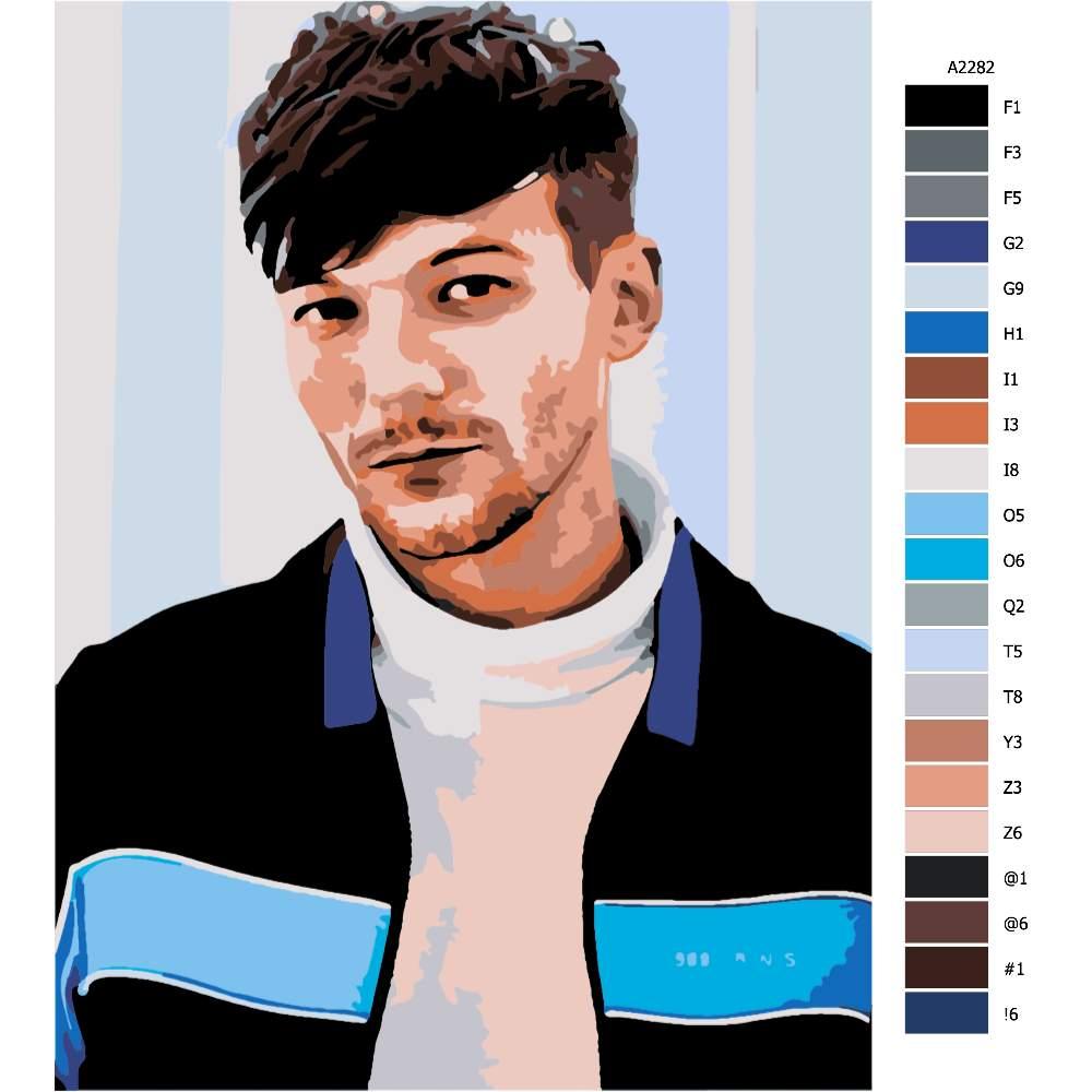 Návod pro malování podle čísel Louis Tomlinson 01